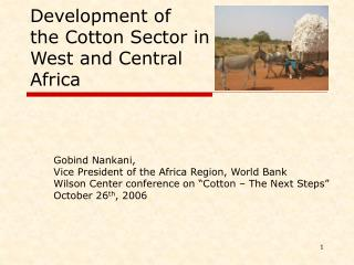 Development of  the Cotton Sector in West and Central Africa