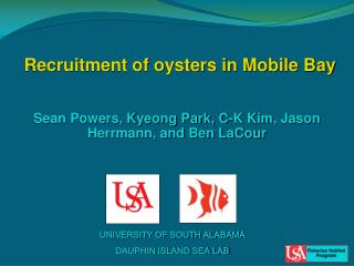 Recruitment of oysters in Mobile Bay