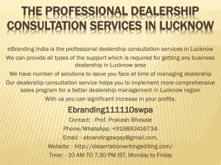The Professional Dealership Consultation Services in Lucknow