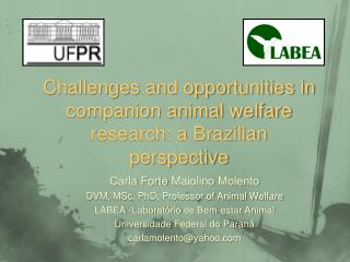 Challenges and opportunities in companion animal welfare research: a Brazilian perspective