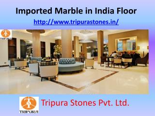 Imported Marble in India Floor