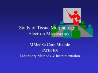 Study of Tissue Morphology    Electron Microscopy