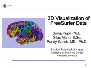 3D Visualization of FreeSurfer Data