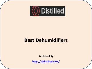 Best Dehumidifiers