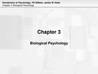 Chapter 3  Biological Psychology