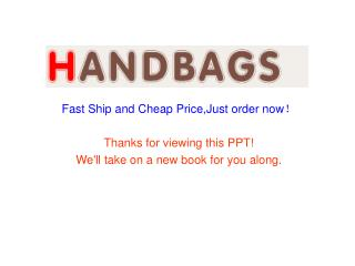 Hermes Kelly 35CM Handbags Online retail