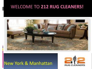 sofa cleaning nyc