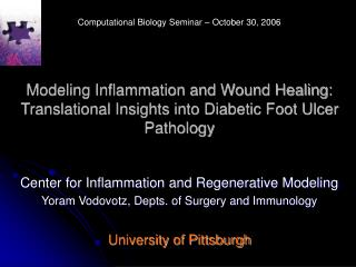 Modeling Inflammation and Wound Healing: Translational Insights into Diabetic Foot Ulcer Pathology