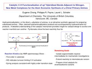 Catalytic C-H Functionalization of sp3 Hybridized Bonds Adjacent to Nitrogen. New Metal Complexes for the Atom Economic
