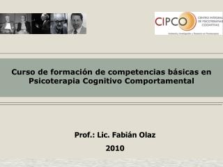 Prof.: Lic. Fabi n Olaz 2010