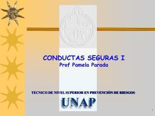 CONDUCTAS SEGURAS I Prof Pamela Parada