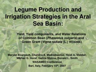 Legume Production and Irrigation Strategies in the Aral Sea Basin: