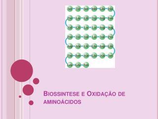 Biossintese e Oxida  o de amino cidos
