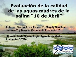 Evaluaci n de la calidad de las aguas madres de la salina  10 de Abril