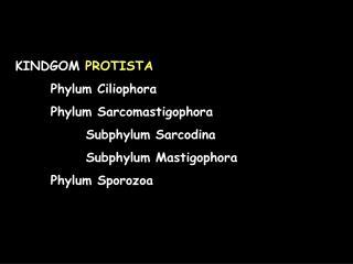 KINDGOM PROTISTA  Phylum Ciliophora  Phylum Sarcomastigophora   Subphylum Sarcodina   Subphylum Mastigophora  Phylum Spo