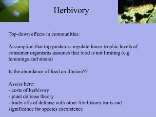Herbivory