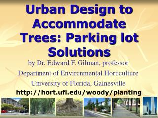Urban Design to Accommodate Trees: Parking lot Solutions