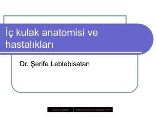 I  kulak anatomisi ve hastaliklari