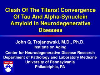 Clash Of The Titans Convergence Of Tau And Alpha-Synuclein  Amyloid In Neurodegenerative Diseases