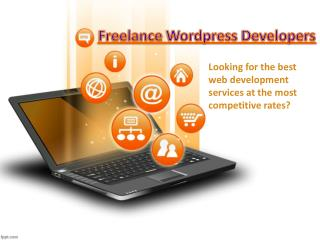Freelance Wordpress Developers