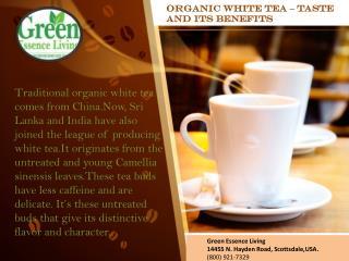 Organic white tea – taste and its benefits
