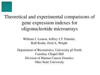 Theoretical and experimental comparisons of gene expression indexes for  oligonucleotide microarrays