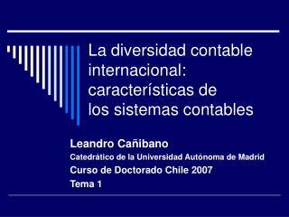La diversidad contable internacional:  caracter sticas de los sistemas contables