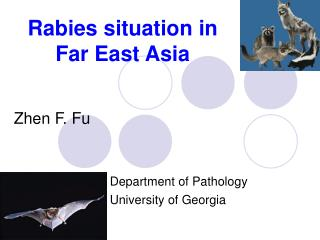 Rabies situation in  Far East Asia