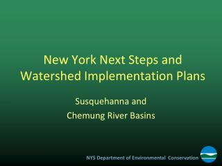 New York Next Steps and Watershed Implementation Plans