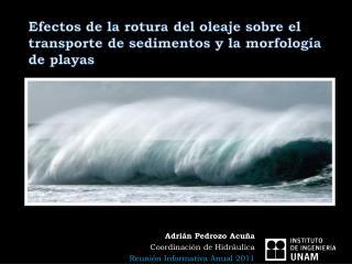 Efectos de la rotura del oleaje sobre el  transporte de sedimentos y la morfolog a de playas