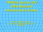 TWWIIA Section 203 CMS Medicaid  Infrastructure Grants