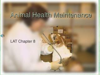 Animal Health Maintenance