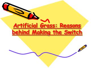 Reasons Behind Making the Switch : Artificial Grass