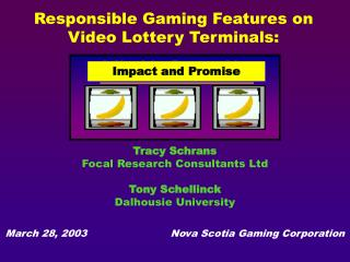 Responsible Gaming Features on    Video Lottery Terminals: