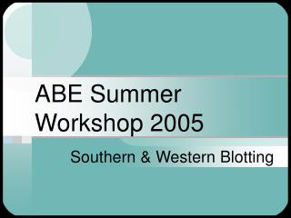 ABE Summer Workshop 2005