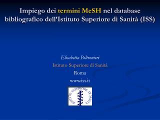 Impiego dei termini MeSH nel database bibliografico dell Istituto Superiore di Sanit  ISS