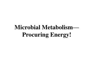 Microbial Metabolism  Procuring Energy
