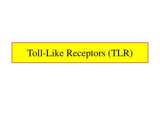 Toll-Like Receptors TLR