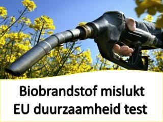 Biobrandstof mislukt EU duurzaamheid test, The Tyler Group