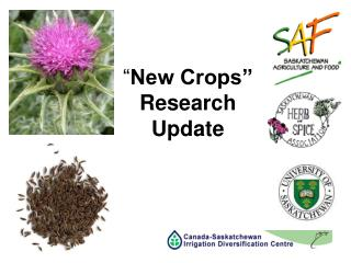 New Crops  Research Update
