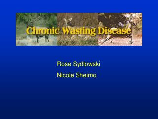 Rose Sydlowski Nicole Sheimo