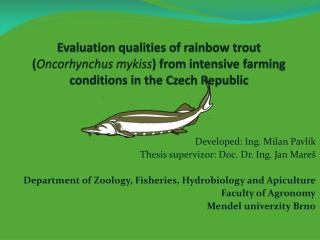 Evaluation qualities of rainbow trout Oncorhynchus mykiss from intensive farming conditions in the Czech Republic