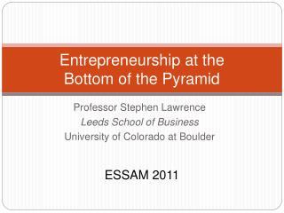 Entrepreneurship at the  Bottom of the Pyramid