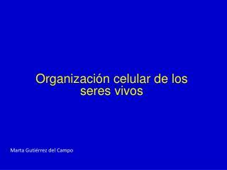 Organizaci n celular de los seres vivos