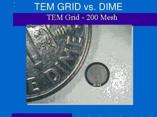 TEM GRID vs. DIME