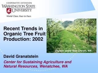 Recent Trends in Organic Tree Fruit Production: 2002