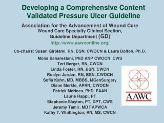 Developing a Comprehensive Content Validated Pressure Ulcer Guideline