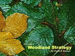 Background Relationships Purpose of Indicative Forestry Strategy Who s involved  Other influences Issues Aims of the str