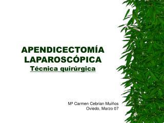 APENDICECTOM A LAPAROSC PICA T cnica quir rgica