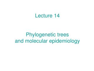 Lecture 14   Phylogenetic trees and molecular epidemiology